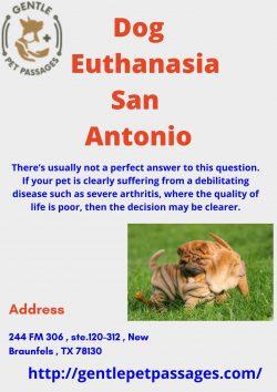 Dog Euthanasia San Antonio – Gentle Pet Passages