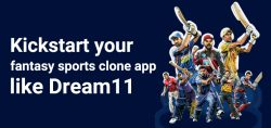 Fantasy Sports Tech – Dream11 Clone App Development Company