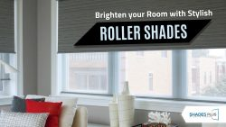 Explore the Unique Collection of Roller Shades!