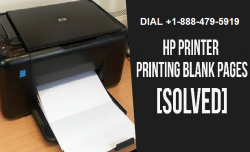 How to fix the HP printer printing blank page