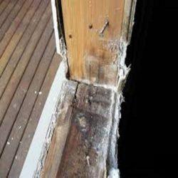 Broken Window Repair In Wellington