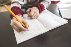 Reasons Why Students Struggle to Write Engaging Text in Academic Essays