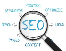 Promote Your Website With Best SEO Company India