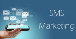 Bulk Sms | Bulk Sms service provider in Delhi | Bulk sms Delhi