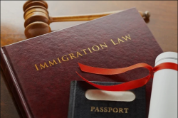 Immigration Lawyer and Services