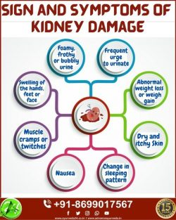 Sign and Symptoms of Kidney Failure