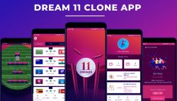 Get Dream11 Clone App for Android and iOS – Fantasy Sports Tech