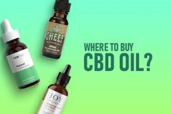 Get CBD Oil For Sale In India At Wholesale Price