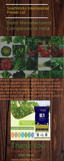 hybrid rice seed manufacturer