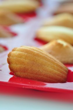 Madeleines Recipe (瑪德蓮蛋糕)