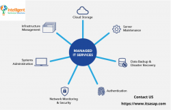 Choose The Specialist For Managed IT Services in US – ITSASAP