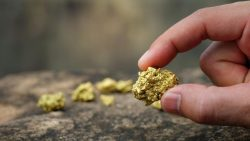 If you want to know about gold exploration, Roman Rubin Black Tusk provides gold property explor ...