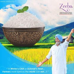 Buy Best Indian Basmati Rice at Affordable Prices- Zeeba