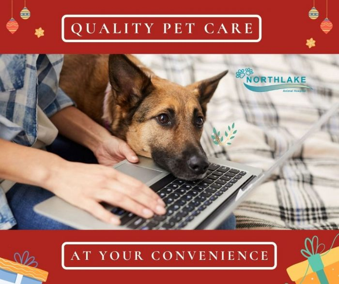 Advanced Solution for Pet Healthcare