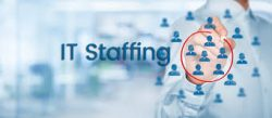Direct IT Staffing Inc | Staffing Services