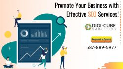 Increase Your Online Visibility With Our SEO Experts