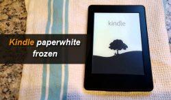 Kindle Paperwhite Frozen
