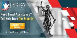 Legal Representation for a Immigration Case