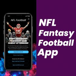 NFL Fantasy Football App Development Company – Want to build a Fantasy Sports Mobile App l ...