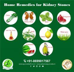 Vegetarian Diet for Kidney Stones