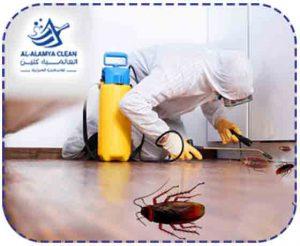 شركة مكافحة حشرات بالرياض | 0533505481 | العالمية كلين