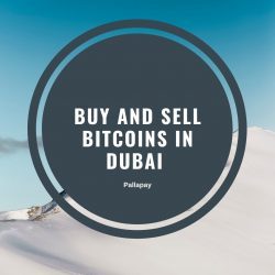 Buy and sell Bitcoins in Dubai – Pallapay