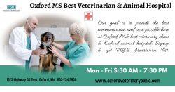 Oxford MS Veterinarian   Pet's Clinic