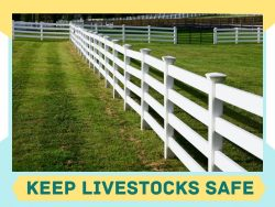 Choose Right Fence for Ranch or Farm