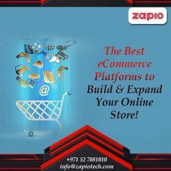 How to Develop a Successful eCommerce Website in 2021?