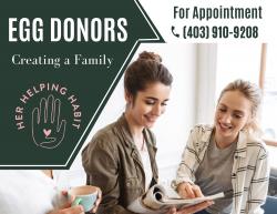 Building a Family Through Surrogacy