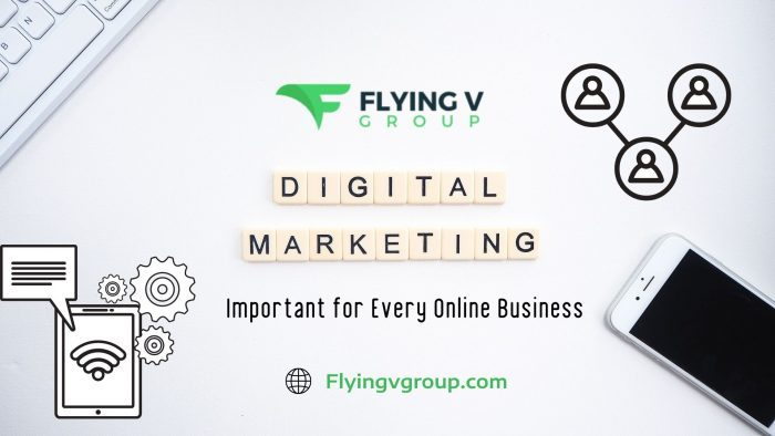 Achieve Your Business Goals with Flying V Group