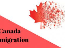 Best Canadian Immigration| Suma Law Office| Mississauga