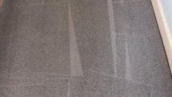 Why You Should Look Into Getting Your Carpet Cleaned By The Professionals