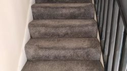 Avoid These Mistakes When Dealing With Water Damaged Carpets