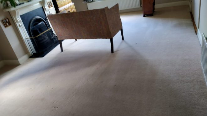 How Often Your Carpet Should Be Cleaned
