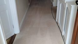 Carpet Cleaning For Homes And Businesses