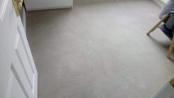 Guide To Carpet Cleaning Costs