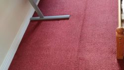 Addressing Worries About Carpet Cleaning