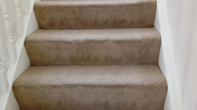 Tips For Choosing The Right Carpet For Easy Carpet Cleaning And Maintenance
