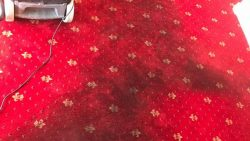 Carpet Cleaning Kinsealy