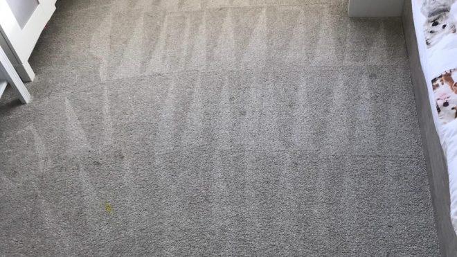 Carpet Cleaning Kilmacud