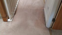 Carpet Cleaning Shankill