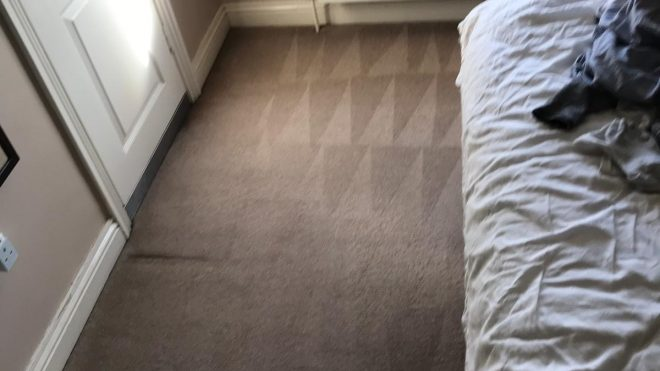 Carpet Cleaning Rush