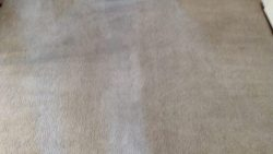 Carpet Cleaning Ringsend