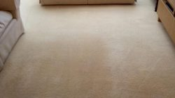 Carpet Cleaning Maynooth