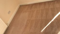 Carpet Cleaning Howth