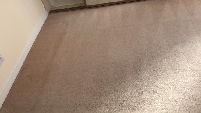Carpet Cleaning Irishtown