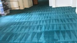 Carpet Cleaning Cabra