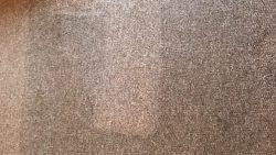 Carpet Cleaning Clonskeagh