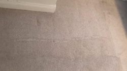 Carpet Cleaning Dublin 22
